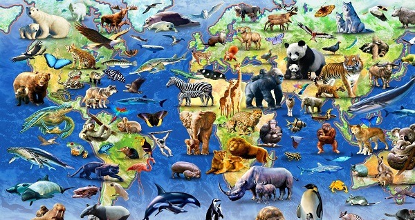 2 world map of endangered species animals art hd wallpaper 1458765.jpg.4ef1f4fcf19d0024b97412c91f26abc2